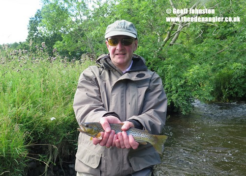 A small stream trout for Ian