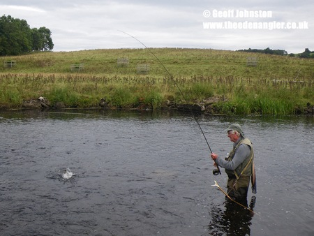 Fly fishing the River Lowther and into a fish