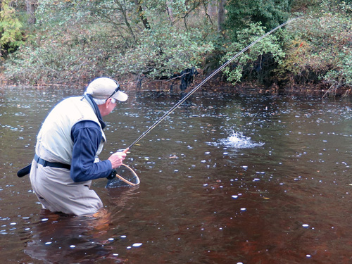 Doug is into a November Grayling