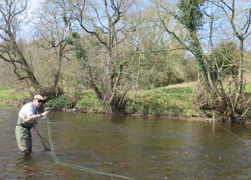 Ian caught on the dry fly
