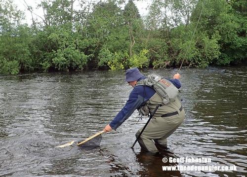 Jon draws a fish to the net