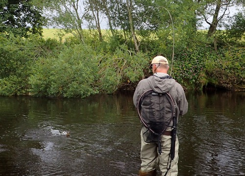 Alan targeted rising fish with midge imitations