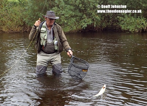 Mike draws a grayling to the net