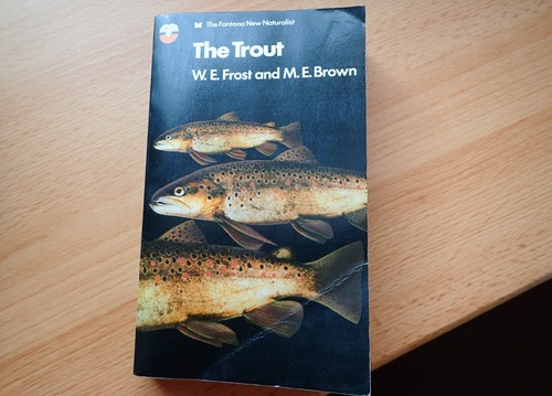 The Trout by Frost and Brown