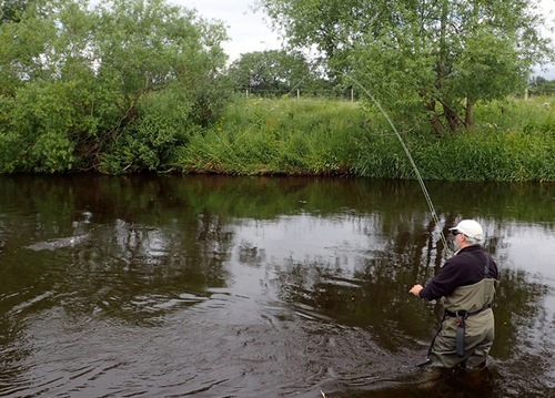 Colin is into an Eden trout