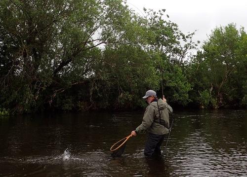 David brings a fish to the net